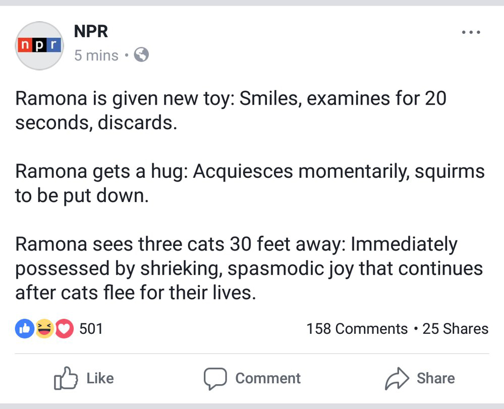 Ramona NPR news update