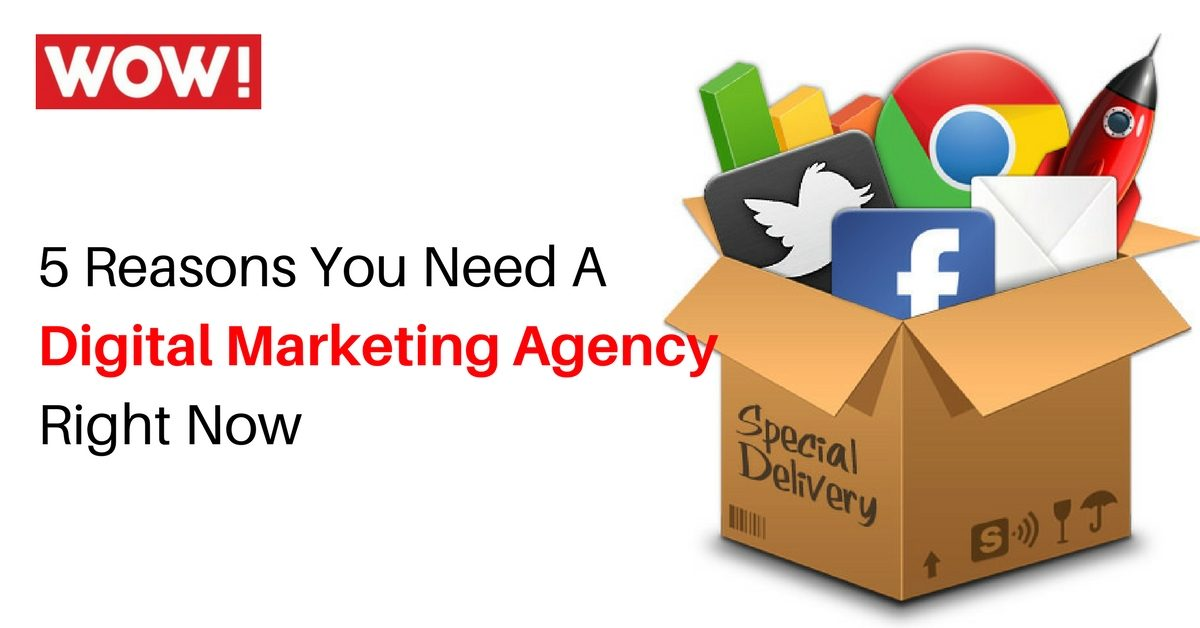 5 Reasons You Need A Digital Marketing Agency Right Now!