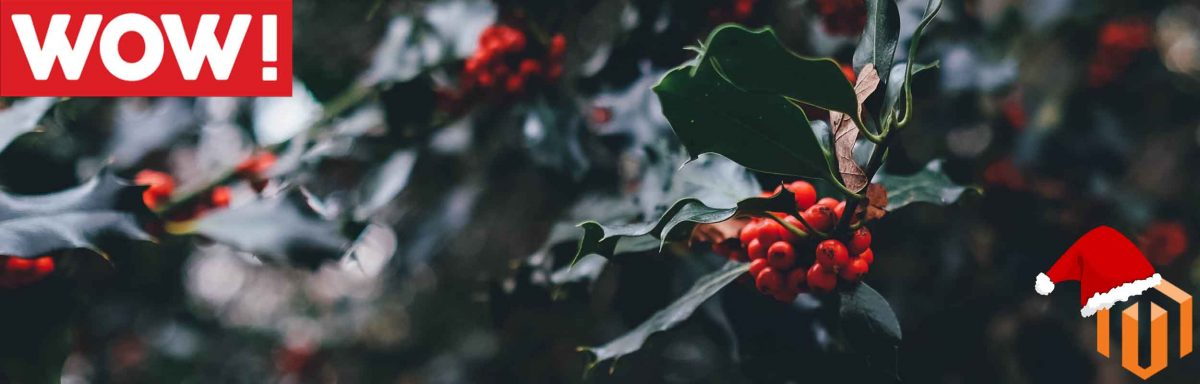4 ways to make your site disaster proof this Christmas!